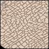 Pattern Elephant Skin